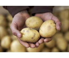 Чистый картофель